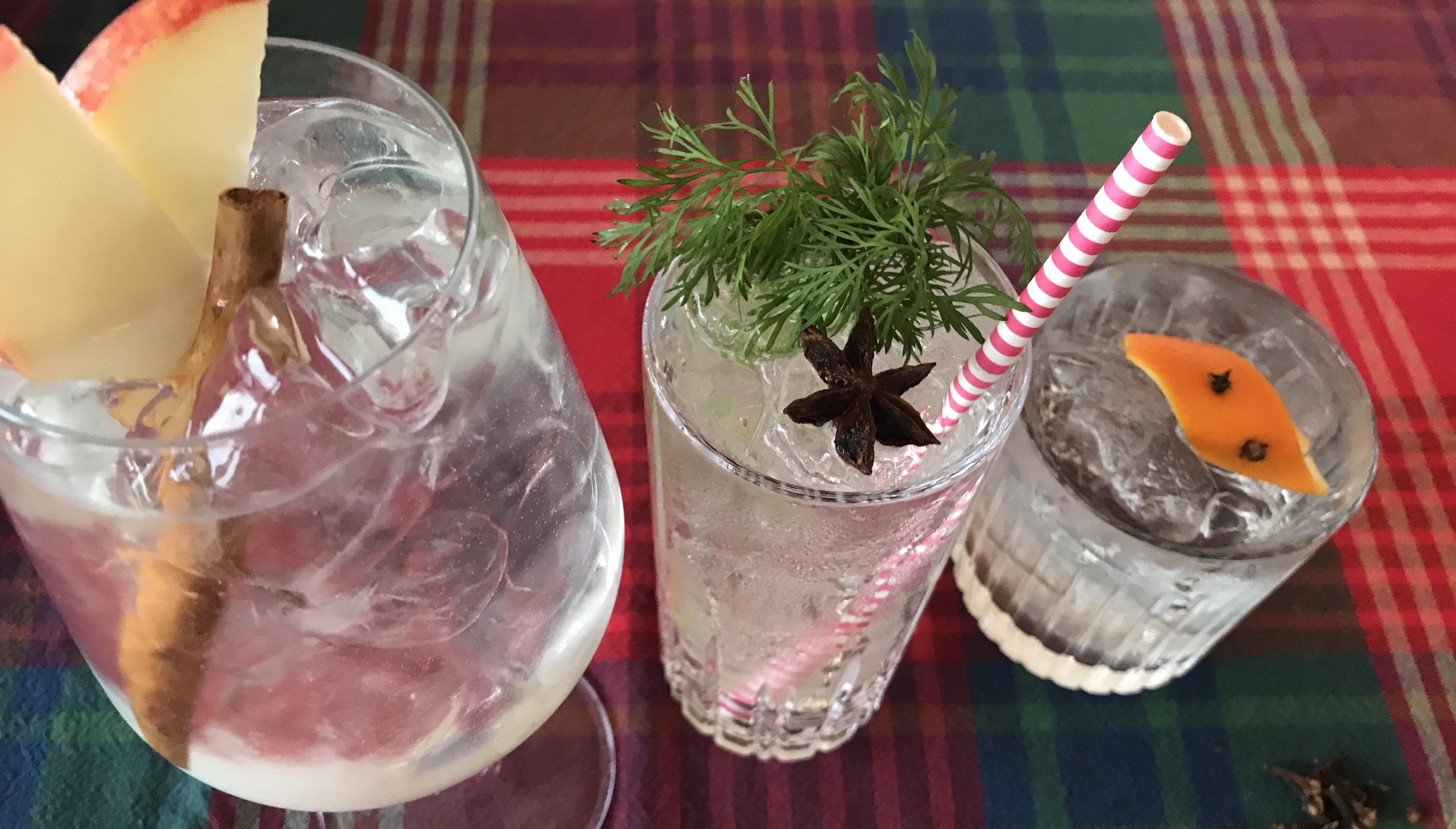 Gin og Tonic til Julen
